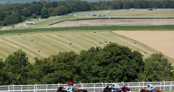 Snow Sky denies Somewhat and the fast-finishing Windshear (nearest) to win the Gordon Stakes.