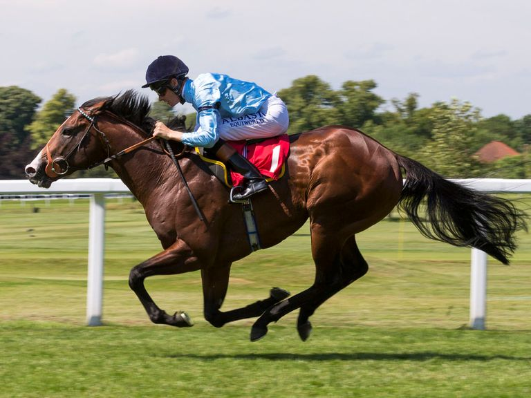 Beacon can hit the target ion the Molecomb Stakes
