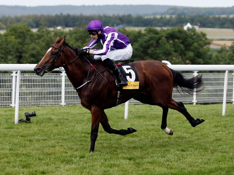 Highland Reel: Impressive at Glorious Goodwood