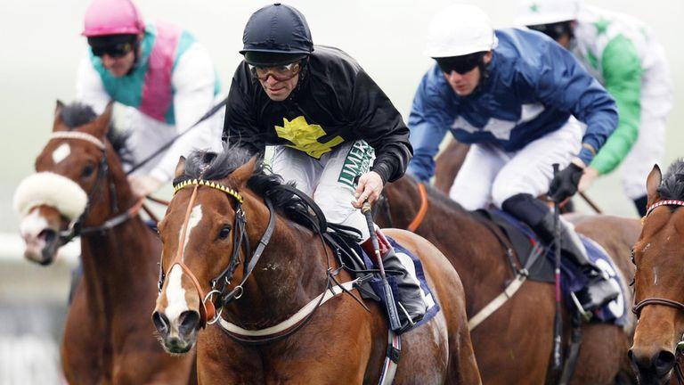 Tax Free has run his final race