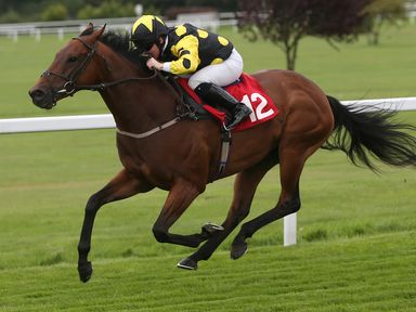 Chilworth Icon ridden by Sam Hitchcott comes home to win The National Youth Music Theatre Charity Handicap