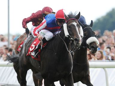 Mutual Regard ridden by Louis Steward wins the Betfred Ebor on Betfred Ebor Day during Day Four of the 2014 Welcome To Yorkshire Ebor Festival at York Race