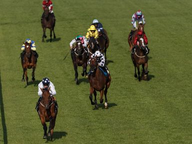 Tall Ship wins The Chichester Observer Handicap