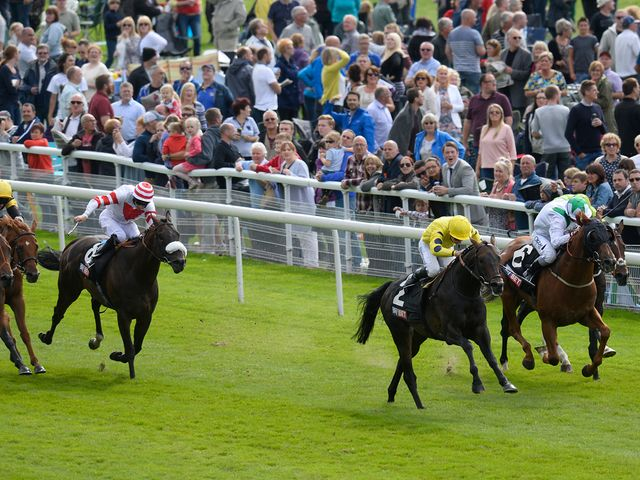Oisin Murphy and Absolutely So (yellow silks) take the City of York Stakes.