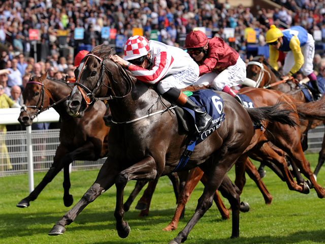 Sole Power bursts through to win the Coolmore Nunthorpe
