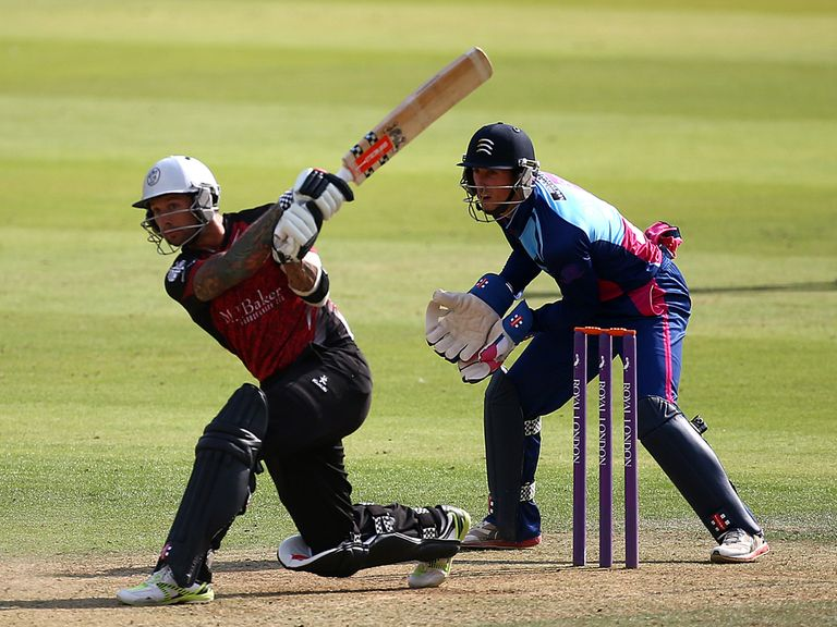 Peter Trego: Starred for Somerset
