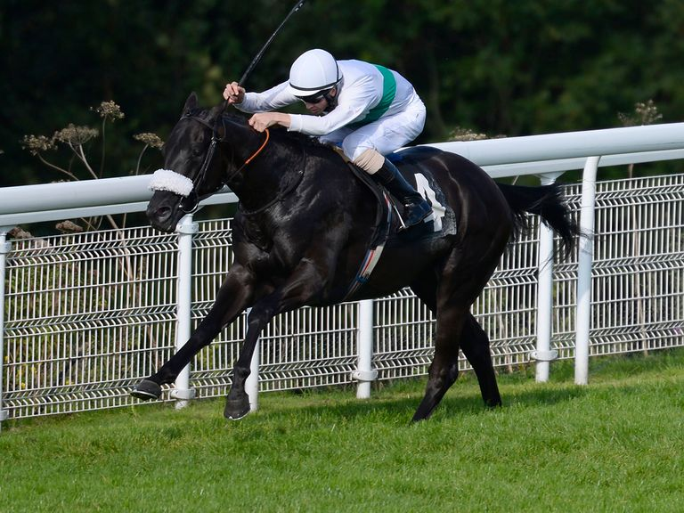 Make It Up: Impressed connections at Goodwood