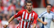 Morgan Schneiderlin: Continued to be linked with Manchester United