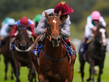 Moheet wins The Francis Clark British Stallion Studs EBF Maiden Stakes