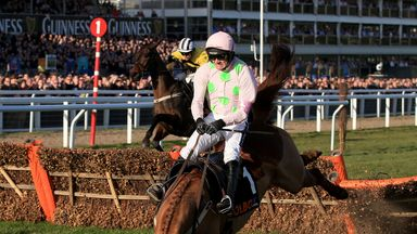 Annie Power comes down in last year's contest with victory seemingly in the bag.