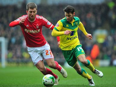 Wes Hoolahan and Gary Gardner battle for the ball
