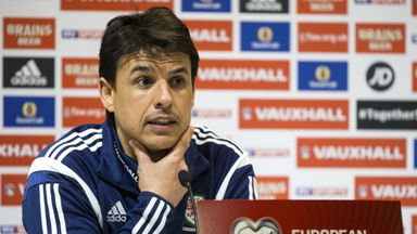 Chris Coleman: The Wales head coach was sticking up for his star player.
