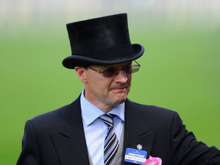 Aidan O'Brien: Plenty of options