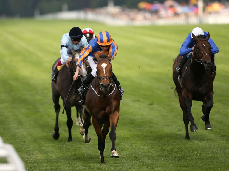 Gleneagles: Will head for the Sussex Stakes at Glorious Goodwood