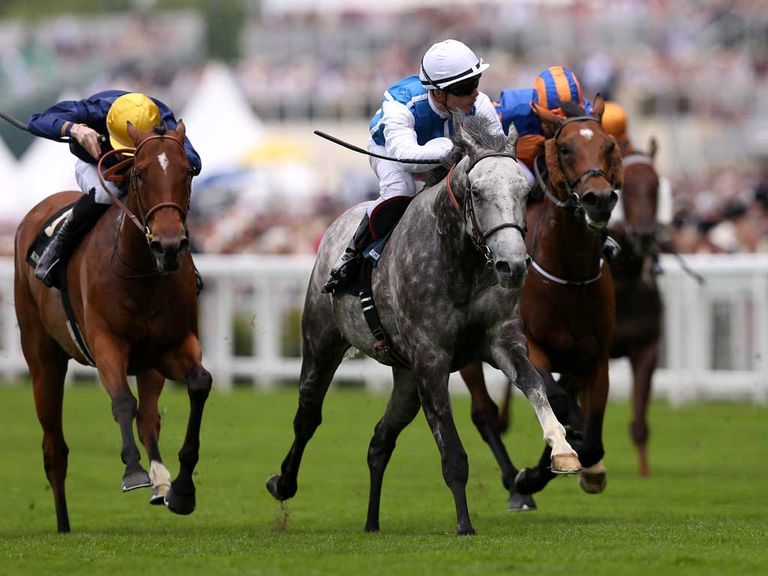 Solow: Sussex Stakes possible