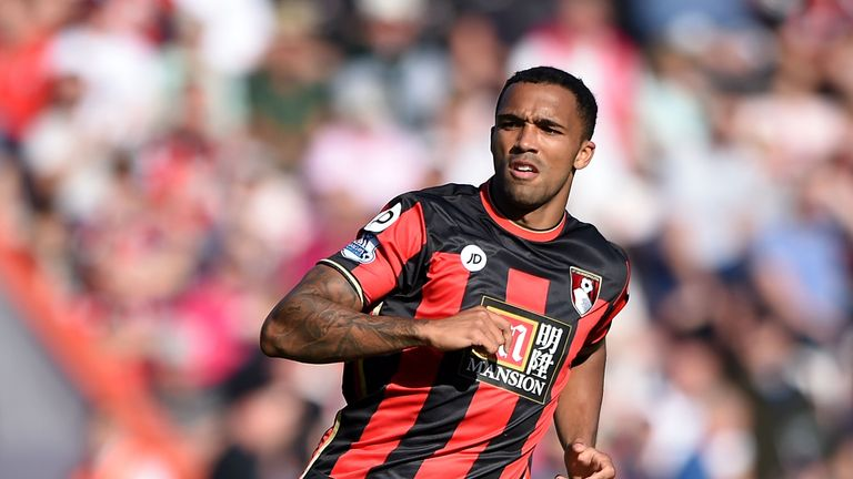 Callum Wilson netted five times before being injured in September