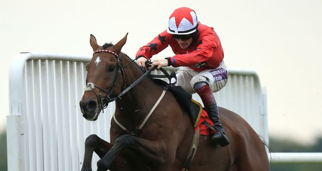 The New One will have his first run over fences at Exeter