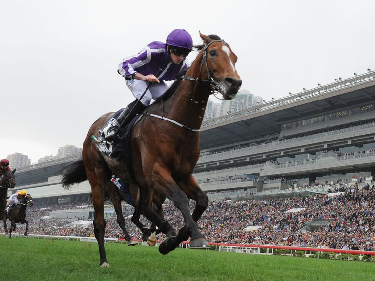 Image result for Highland reel