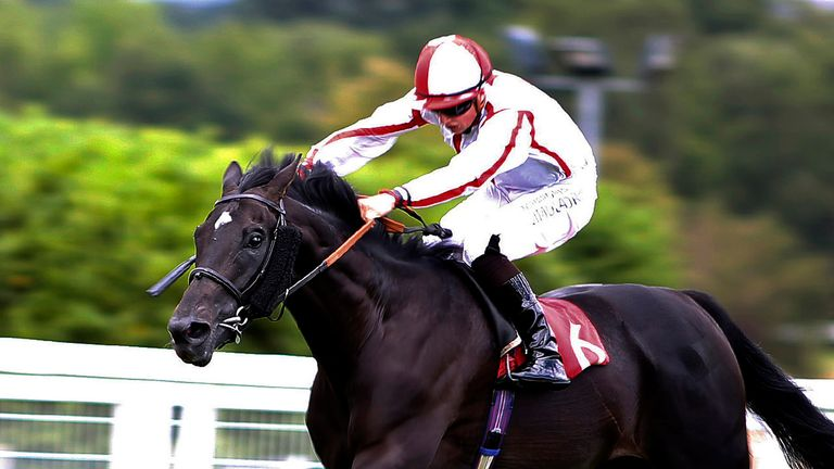 Who Dares Wins will be the mount of Ryan Moore