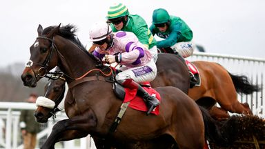 Peace And Co (dark green) in action at Sandown