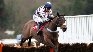 David Bass and Akavit clear the last to win The Betfred 'Home Of Goals Galore' Juvenile Hurdle Race at Sandown.