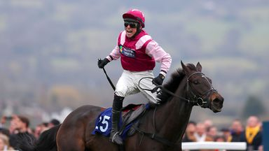 Superb Story: Out of Cheltenham