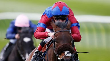 Hugo Palmer is hopeful of a big run from Gifted Master