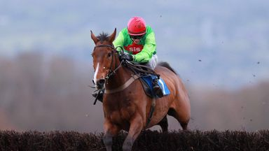 Buywise is being aimed at the Bet365 Gold Cup