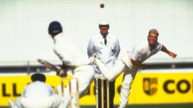 Shane Warne took 708 Test match wickets for Australia