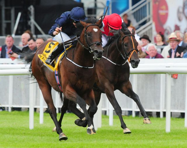 Intelligence Cross outclassed his rivals in the Round Tower Stakes
