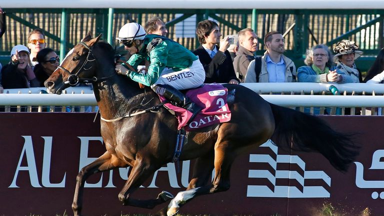 Limato: Could run in the BC Mile
