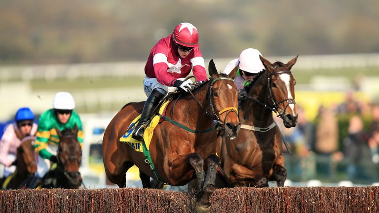 Cheltenham 2017 Irish runners - We look at the top ten chances