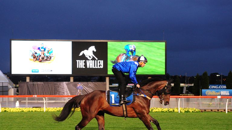 Hugh Bowman riding Winx during Breakfast with the Best at Moonee Valley