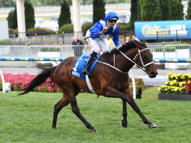 Winx: Odds available to land a third Cox Plate