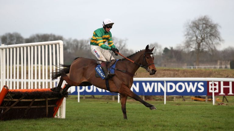 Defi Du Seuil: Misses the Greatwood Hurdle at Cheltenham