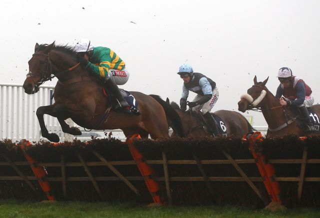 Unowhatimeanharry clears a flight early in the race