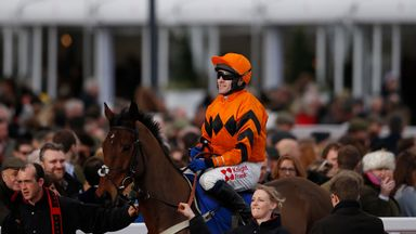 Thistlecrack: Out of the Gold Cup