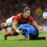 Wales' Liam Williams says a British & Irish Lions call-up would be a 'dream'