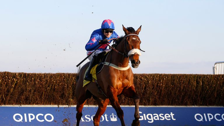 Cue Card: Among star-studded field at Ascot