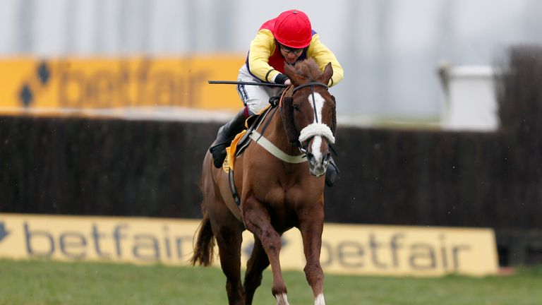 Native River ran well in the Cheltenham Gold Cup