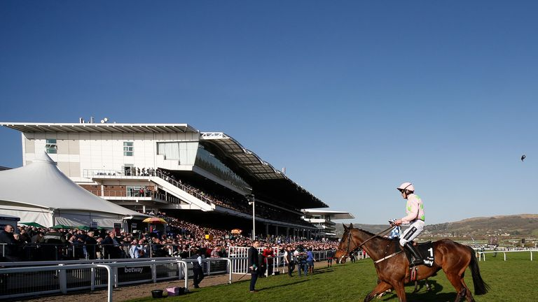 Douvan: Expected to be back in the autumn
