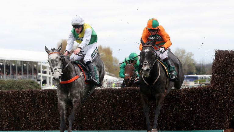 Cloudy Dream (left): Could still run at Cheltenham