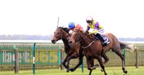 Navy sets sail for Curragh