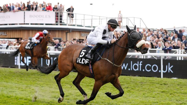 Judicial ridden by jockey Joe Doyle on the way to winning the LDF Conditions Stakes