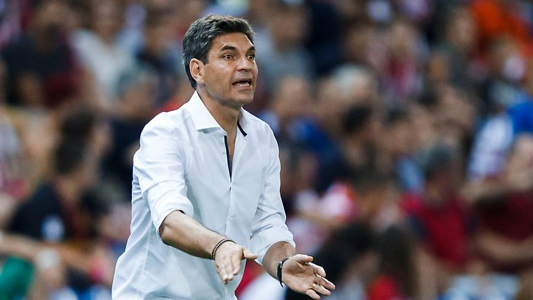 Mauricio Pellegrino is also in contention to take over at Selhurst Park