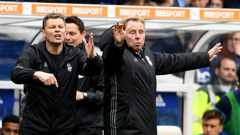Steve Cotterill will not be Harry Redknapp's assistant at Birmingham