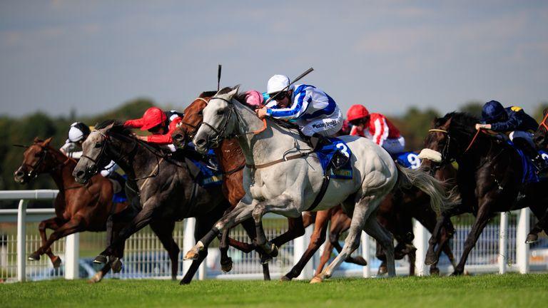 Thundering Blue: Drops back to ten furlongs in the John Smith's Cup