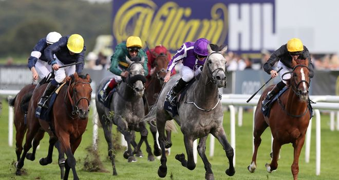 Capri (grey) stays on strongly to win the St Leger
