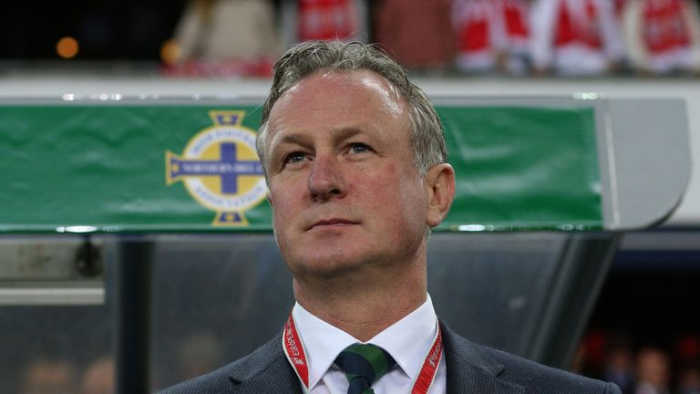 Michael O'Neill oversaw Northern Ireland's path to Euro 2016