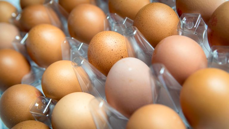 Norway Winter Olympics team mistakenly orders 15000 eggs